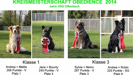tl_files/HSV Sprendlingen/Obedience/Teams/KM1.jpg
